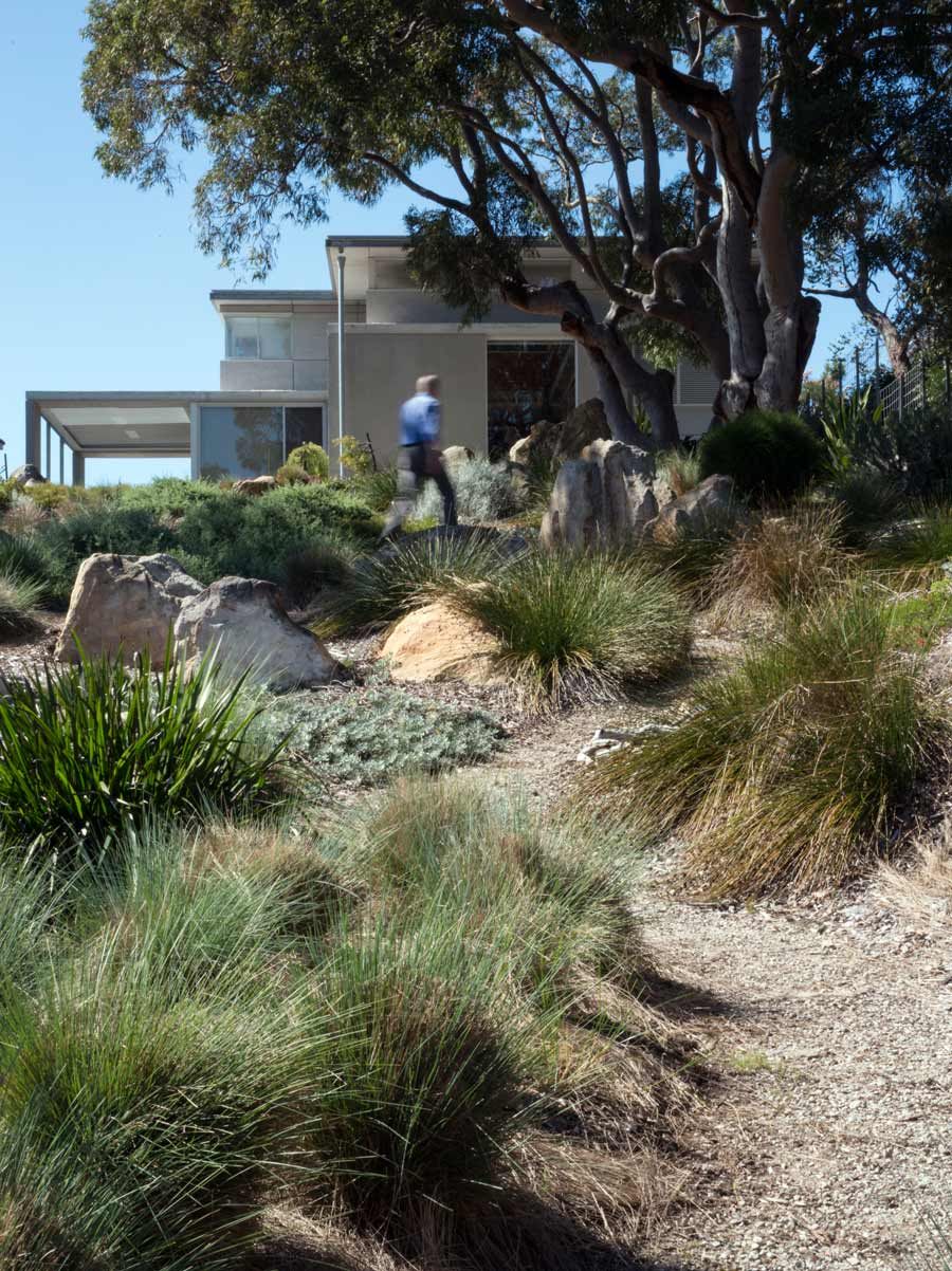 Bokor bundeena house nsw for Gardening australia